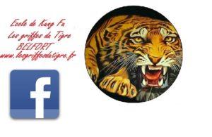 logo kung fu V11 facebook